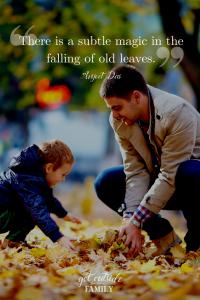 Magic of falling leaves
